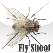 Fly Shoot